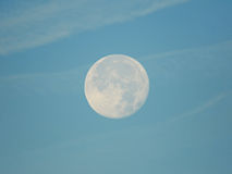 Luna piena di giorno Fotografia Stock Libera da Diritti