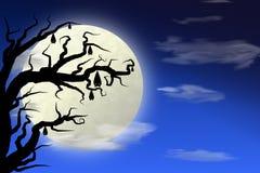 Luna piena e pipistrello sull'albero con il cielo blu scuro Fotografie Stock Libere da Diritti