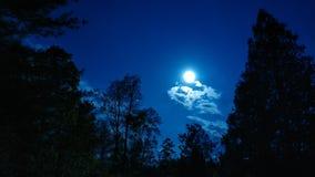 Luna piena il cielo notturno fotografia stock libera da diritti