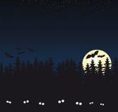 Luna piena scura della foresta Immagine Stock Libera da Diritti