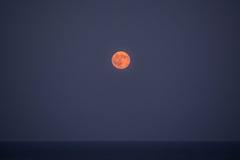 Luna piena sopra il mare III Immagine Stock