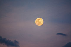 Luna piena sopra Tampa Bay in Florida fotografia stock libera da diritti