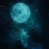 Luna piena sui cieli fotografia stock