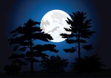 Luna piena in una foresta di notte Immagini Stock Libere da Diritti