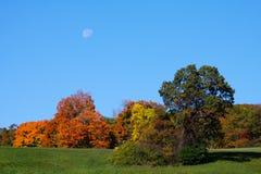 Luna sobre árboles en otoño Fotos de archivo libres de regalías