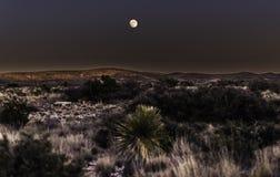Luna sobre desierto Fotografía de archivo libre de regalías