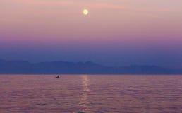 Luna sopra il Mar Rosso Immagine Stock Libera da Diritti