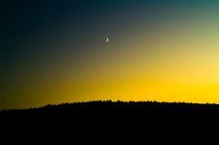 Luna sotto la foresta Fotografia Stock Libera da Diritti