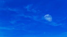 Luna su luce del giorno Immagini Stock