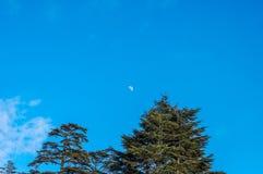 Luna sul cielo Fotografia Stock Libera da Diritti