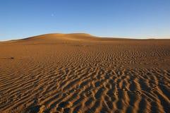Luna sul deserto Fotografie Stock Libere da Diritti