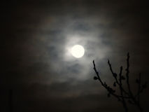 Luna a través de las nubes imágenes de archivo libres de regalías