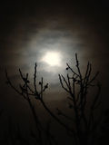 Luna a través de las nubes imagenes de archivo