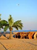 Luna, uccello, palme ed ombrelli sulla spiaggia vuota Fotografia Stock Libera da Diritti