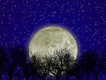 Luna y bosque stock de ilustración