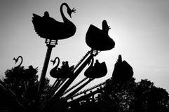 Lunapark. Black swans in lunapark. Black and white Stock Photos