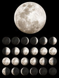 Lunar or Moon Phases. All of the lunar or moon phases Royalty Free Stock Photo