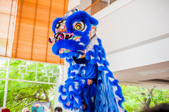 Lunar new year Asian dragon coming vietnamese new year Royalty Free Stock Image
