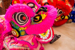 Lunar new year Asian dragon coming vietnamese new year royalty free stock photography