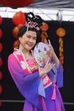 Lunar New Year Festival Stock Photos