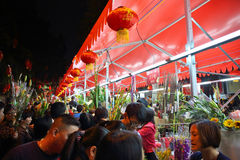Lunar new year flower fairs 4 Royalty Free Stock Photos