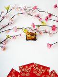 Lunar New Year pig 2019 royalty free stock photo