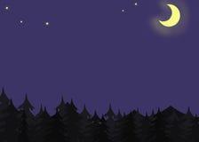 Lunar Night. Mistic dark fir-wood in the lunar night Royalty Free Stock Photo