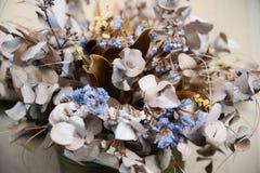 Lunaria y statice secados - herbario de las flores Fotos de archivo