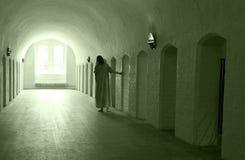 Lunatic asylum Royalty Free Stock Photos