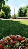 Lunch bij het park royalty-vrije stock afbeelding