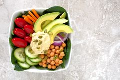 Lunch bowl with fresh vegetables and hummus Stock Images