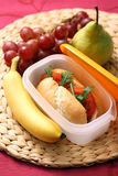 Lunch box Royalty Free Stock Photos
