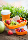 Lunch box with sandwich, cookies, veggies and fruits Royalty Free Stock Photography