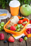 Lunch box with sandwich and fruits. Lunch box for kids with sandwich, cookies, fresh veggies and fruits stock photos