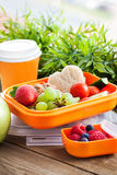 Lunch box with sandwich and fruits. Lunch box for kids with sandwich, cookies, fresh veggies and fruits stock photography