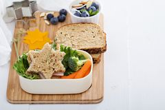 Lunch box with sandwich and salad Royalty Free Stock Photo