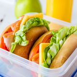 Lunch box with sandwich salad and friuts Royalty Free Stock Photography