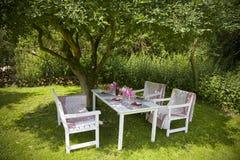 Lunch in de tuin stock foto