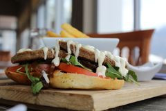 Lunch - hamburger i układy scaleni lubimy nie inny zdjęcie stock