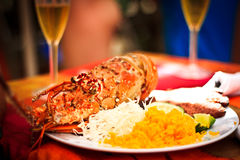 Lunch of lobster Stock Images