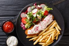 Lunch menu fried pollock with french fries and fresh salad close-up on a plate and sauce. horizontal top view royalty free stock photo
