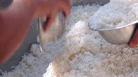 Lunch monks. Dry rice is lunch monks in Myanmar stock video
