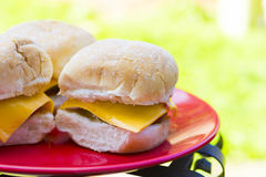 Lunch outdoor: home-made cheeseburgers on plate Stock Images