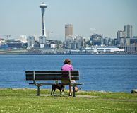 Lunch In the Park. Lady and her dog having lunch at Alki Stock Images