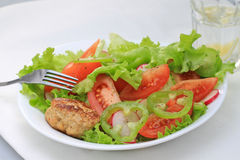 Lunch plate. A shot of a lunch plate with fresh salad and pork cutlet Royalty Free Stock Image