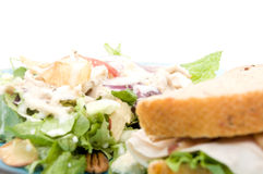 Lunch with Salad Royalty Free Stock Images