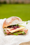 Lunch sandwich Royalty Free Stock Photography