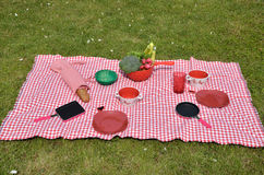 Lunch set on a lawn Royalty Free Stock Images