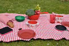 Lunch set on a lawn Royalty Free Stock Photo