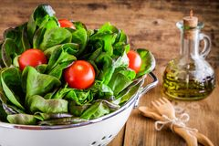 Lunch time: fresh green organic lettuce with cherry tomatoes Stock Images
